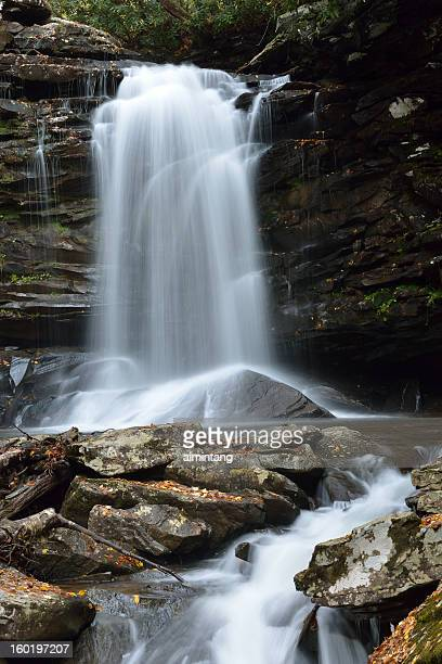waterfalls in monongahela national forest - monongahela national forest stock photos and pictures