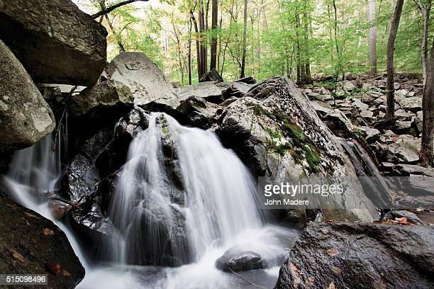 waterfalls in nj woods - state park stock pictures, royalty-free photos & images