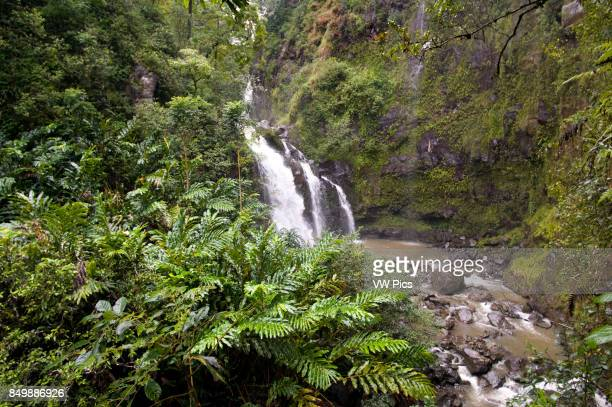 Waterfalls in the path of road to Hana Maui Hawaii