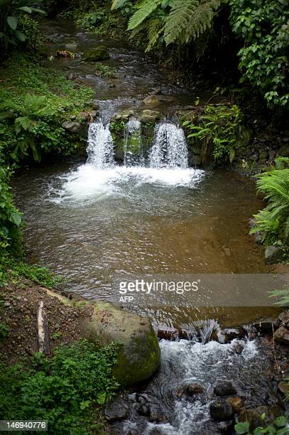 Waterfalls in the Pringadora river in the Patrocinio Natural Reserve in the Quetzaltenango department 196 km southwest of Guatemala City on June 22...