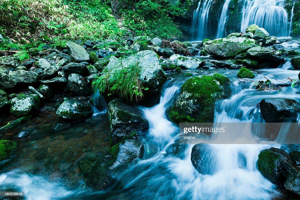 Waterfalls & Mountain Stream in Summer : Stock Photo