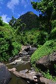 Waterfalls of the Kimwarer River surrounded by lush rainforest vegetation