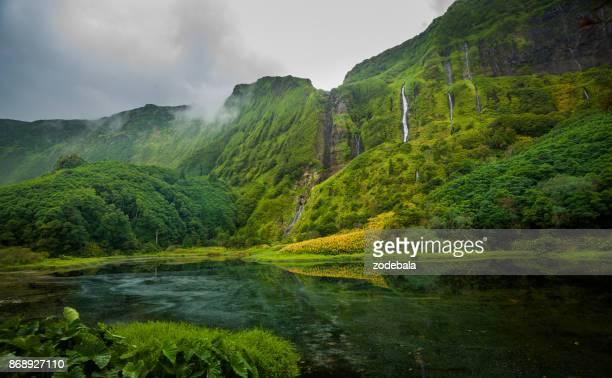 cascadas de flores isla azores portugal - naturaleza fotografías e imágenes de stock
