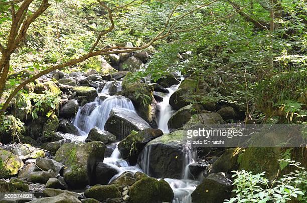 waterfalls - 鳥取県 無人 ストックフォトと画像