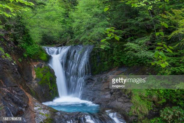 waterfalls surrounded by greenery - isogawyi stock pictures, royalty-free photos & images