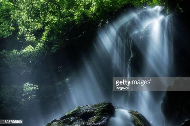 waterfalls with rays of sunlight - isogawyi - fotografias e filmes do acervo