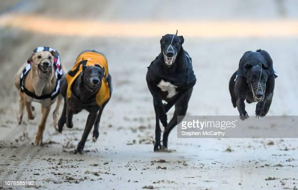 Irish greyhound derby betting 2021 movies bets on chelsea