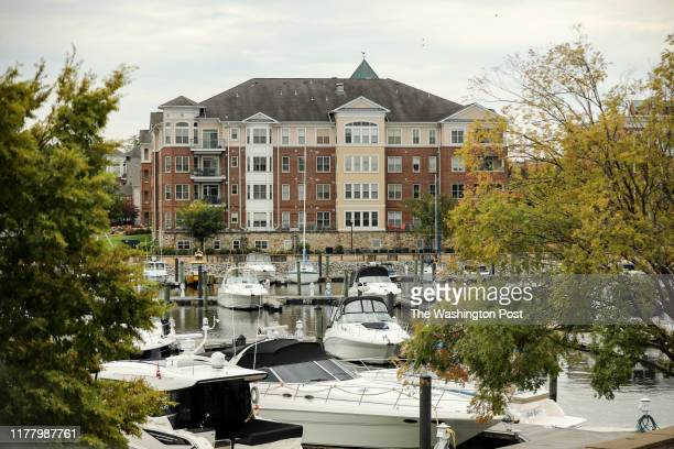 Waterfront condos overlook the Belmont Bay Harbor Marina
