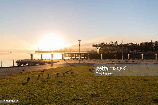 waterfront geelong, victoria, australia. a beautiful beach, good stop on the way to great ocean road. - ジーロング ストックフォトと画像