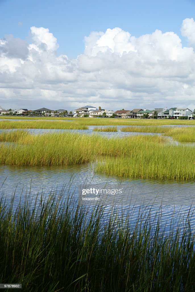Waterfront houses : Stock Photo