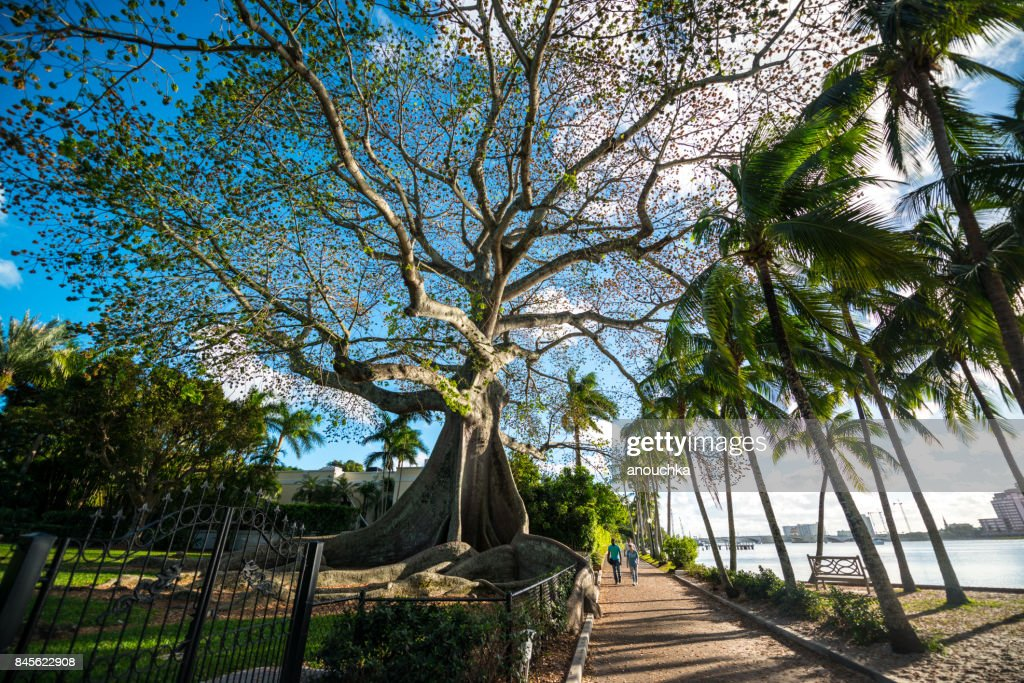 Waterfront park in Palm Beach, Florida, USA : Stock Photo