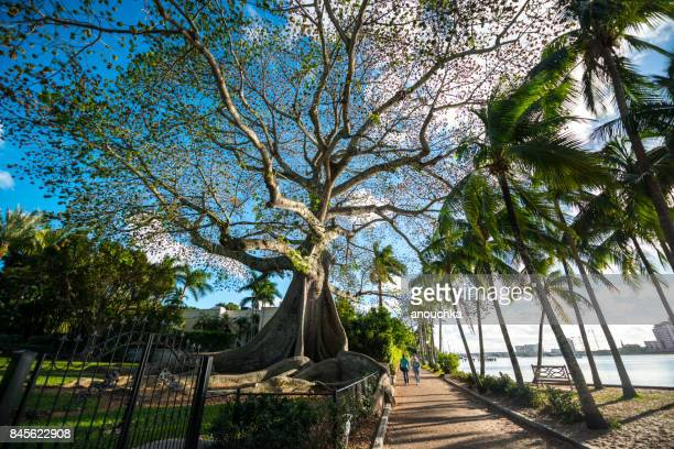 Waterfront park in Palm Beach, Florida, USA