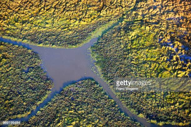 waterhole, aerial view, south luangwa national park, zambia - south luangwa national park stock pictures, royalty-free photos & images