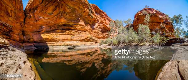 waterhole in the garden of eden, kings canyon, george gill range, watarraka national park, northern territory, australia - alice springs stock pictures, royalty-free photos & images