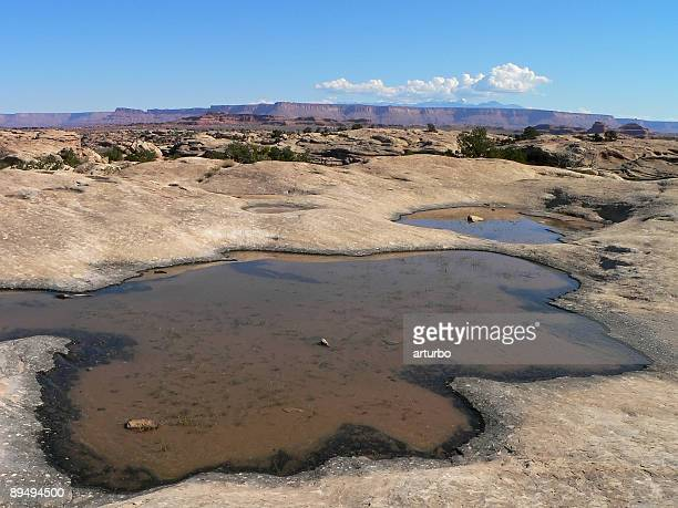 waterholes on plateau with blue sky and clouds - scarce stock pictures, royalty-free photos & images