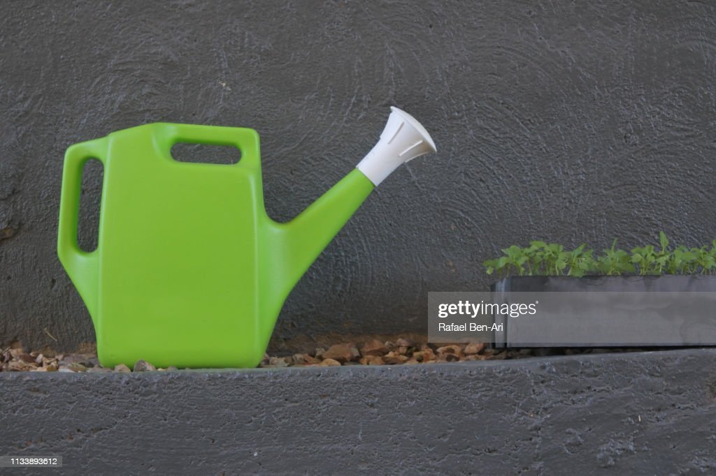 Watering can and plants : Stock Photo