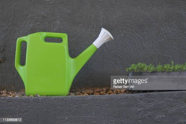 Watering can and plants