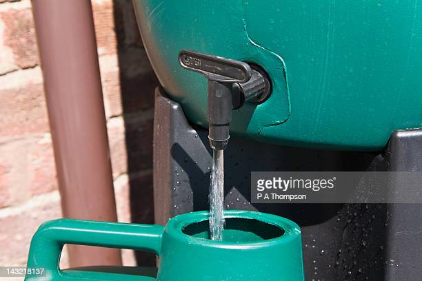 watering can being filled from a water butt, england - harvesting stock pictures, royalty-free photos & images