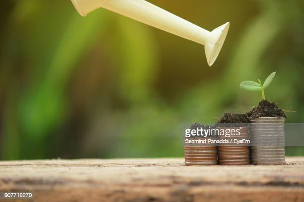 Watering Can Over Soil And Plant On Coins