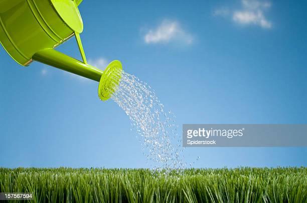 Gießkanne Duschen dem Rasen