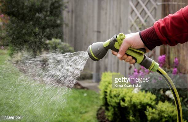 watering plants in the garden - lawn stock pictures, royalty-free photos & images