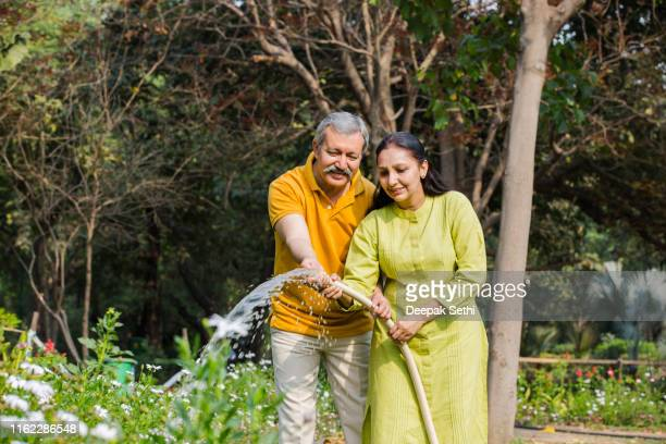 watering plants stock photo - stock photos - husband wife stock pictures, royalty-free photos & images