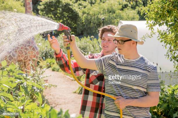 watering the plants - down syndrome stock pictures, royalty-free photos & images