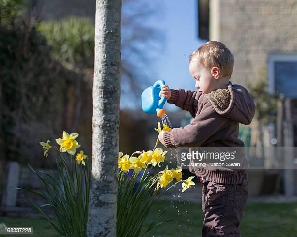 watering the plants, toddler style - s0ulsurfing stock-fotos und bilder