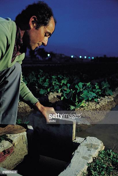 Waterings in the vegetable garden Santomera Murcia A farmer manipulating the watering canal in a vegetable garden