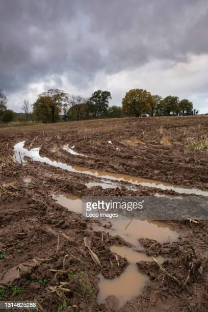 Waterlogged farmland near Monmouth in South Wales.