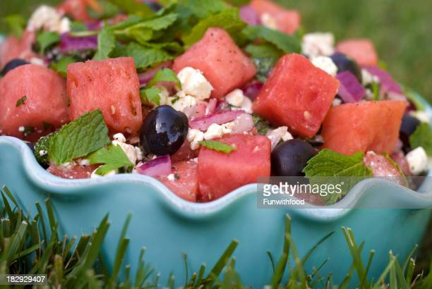 Watermelon & Feta Cheese Summer Picnic Fruit Salad on Backyard Lawn