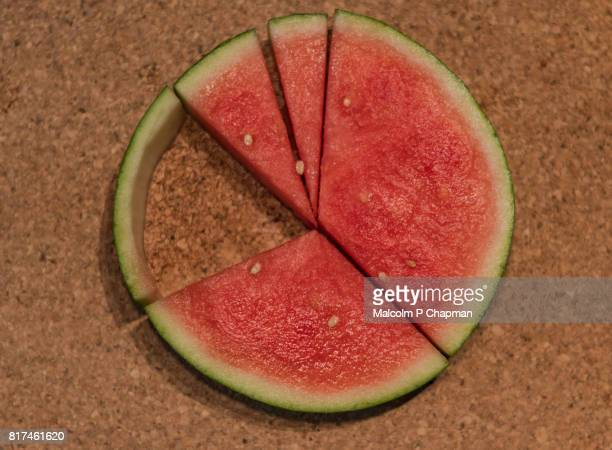 Watermelon Pie Chart infographic