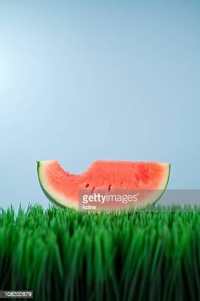 Watermelon Slice With Bite Gone