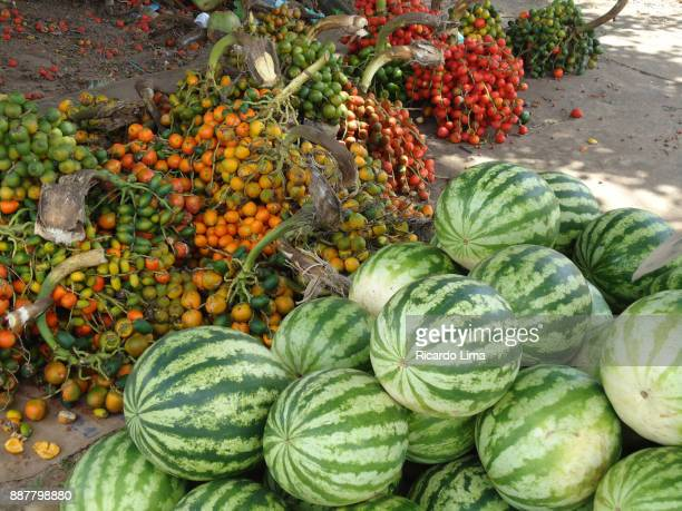 Watermelons And Pupunha Fruits In Amazon Region