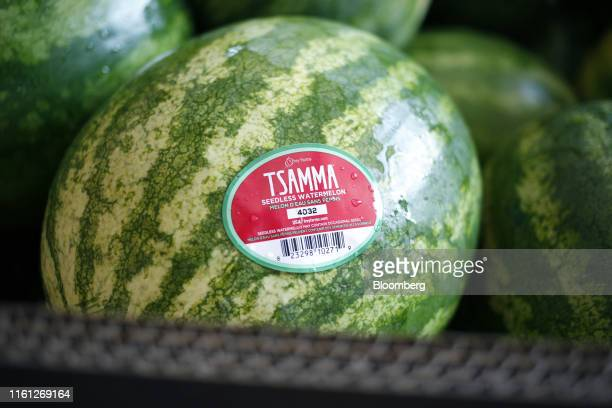 Watermelons sit in a packing shed at Frey Farms Inc in Poseyville Indiana US on Thursday Aug 1 2019 Overall the value of watermelon exports rose by...
