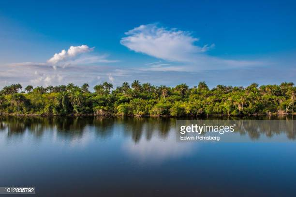 waters edge - liberia stock pictures, royalty-free photos & images