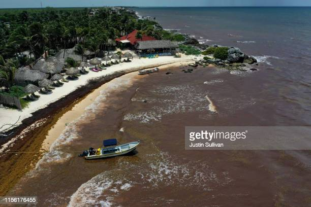 Waters near a Tulum resort are brown from sargassum, a seaweed-like algae, on June 15, 2019 in Tulum, Mexico. Mexico's Riviera Maya Caribbean tourist...