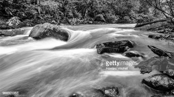 waters run - brook mitchell stock pictures, royalty-free photos & images