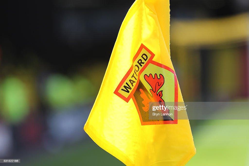 Watford v Sunderland - Premier League : News Photo