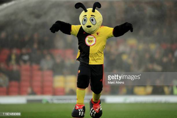 Watford FC mascot Harry the Hornet looks on prior to the Premier League match between Watford FC and Crystal Palace at Vicarage Road on December 07,...
