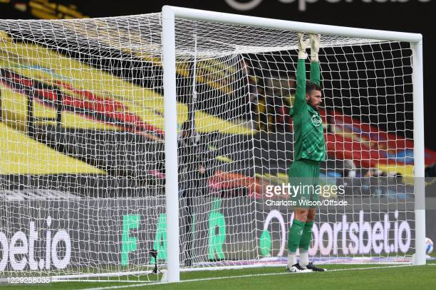 Watford goalkeeper Ben Foster stretches to the crossbar during the Sky Bet Championship match between Watford and AFC Bournemouth at Vicarage Road on...
