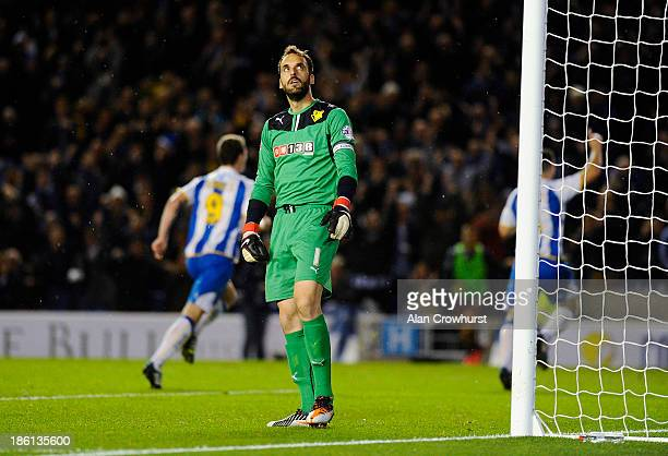 Watford goalkeeper Manuel Almunia looks dejected after Brighton score during the Sky Bet Championship match between Brighton & Hove Albion and...