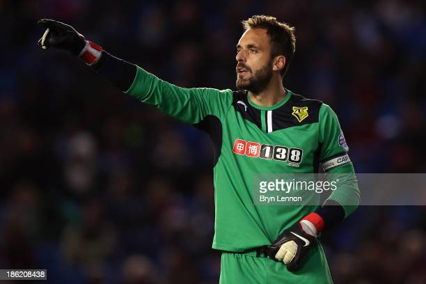 Watford goalkeeper Manuel Alumina instructs his team during the Sky Bet Championship match between Brighton & Hove Albion and Watford at Amex Stadium...