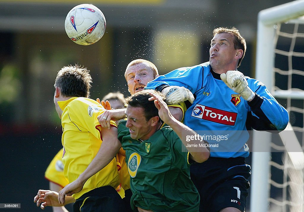 Watford keeper Alec Chamberlain punches clear during the Nationwide Division One match between Watford and Norwich City at Vicarage Road on April 24, 2004 in Watford, England.
