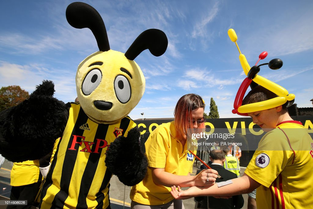 Watford mascot Harry the Hornet as Watford fans get temporary ...