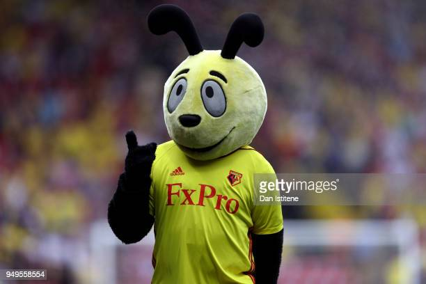 Watford Mascot Harry the Hornet poses prior to the Premier League match between Watford and Crystal Palace at Vicarage Road on April 21 2018 in...