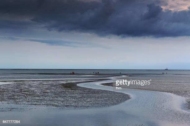 wattenmeer national park near büsum/ schleswig-holstein/ germany - low tide stock pictures, royalty-free photos & images