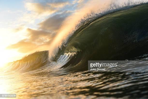 Wave 1/2
