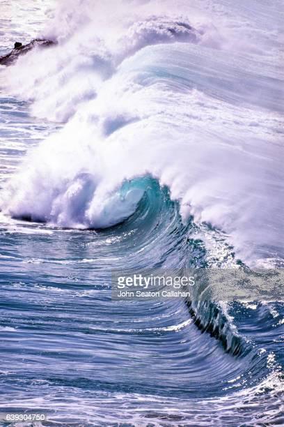 wave at waimea bay - waimea bay - fotografias e filmes do acervo