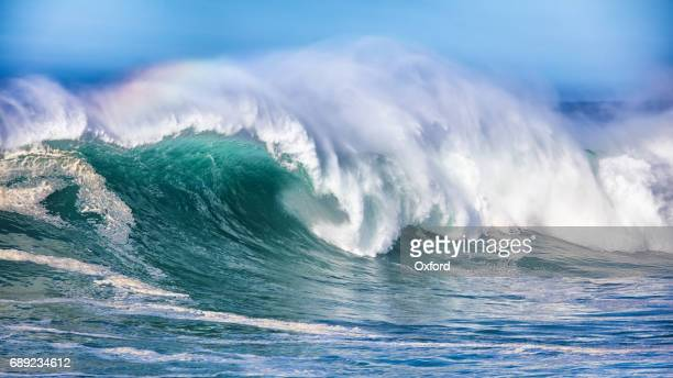 Wave in Pacific Ocean